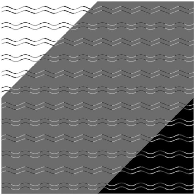 ¿Zigzag o curvas?
